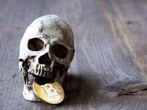 Закройте вверх черепа сдерживая золотое bitcoin на деревянном столе Концепция вклада и зыбкость bitcoin и cryptocurrency стоковое изображение rf