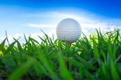 Закройте вверх шар для игры в гольф на колышках тройника готовых для игры с предпосылкой неба стоковые изображения rf