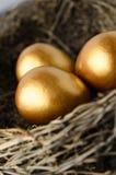Закройте вверх яичек золота в гнезде Стоковая Фотография RF