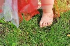 Закройте вверх baby& x27; ноги s на зеленой траве Стоковое Фото