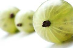 Закройте вверх gooseberrys на белой предпосылке Стоковая Фотография RF