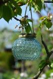 Закройте вверх hangin лампы lampion милого светлого teal стеклянного солнечного на brach в дереве стоковое фото rf