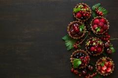 Закройте вверх tartlets шоколада с сливк шоколада, свежими клубниками, полениками, голубиками, красными смородинами и вишнями Стоковое фото RF