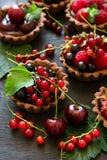 Закройте вверх tartlets шоколада с сливк шоколада, свежими клубниками, полениками, голубиками, красными смородинами и вишнями Стоковое Изображение