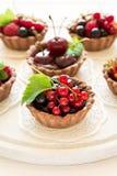 Закройте вверх tartlets шоколада с сливк шоколада, свежими клубниками, полениками, голубиками, красными смородинами и вишнями Стоковые Фото