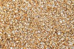 закройте песок вверх Стоковое фото RF