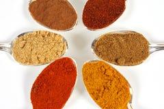 закройте 6 spices вверх стоковые изображения rf