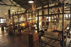 Закручивая завод Стоковые Фото