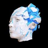 Закрыванный взрывать лоснистой женщины головной - головная боль, умственные проблемы, стресс Стоковая Фотография
