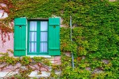 Закрытое окно с штарками и плющом на старой стене стоковые изображения rf