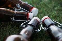 Закрытые бутылки пива лежа совместно на зеленой траве Стоковые Изображения