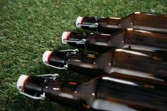 Закрытые стеклянные бутылки пива лежа на зеленой траве Стоковые Изображения RF