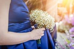 Закрытый вверх по woman& x27; цветок владением руки s крошечный красивый белый Стоковые Изображения RF