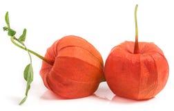 2 закрыли томаты шелухи при лист изолированные на белой предпосылке Стоковое фото RF