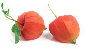 2 закрыли томаты шелухи с лист на белой предпосылке Стоковое Изображение