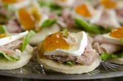 Закуска печенья Турции и бри Стоковое Фото