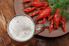 Закуска пива раков стоковые изображения rf