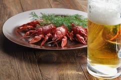 Закуска пива раков стоковое изображение