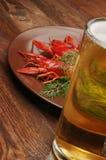 Закуска пива раков стоковые изображения