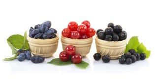 Закуска с ягодами Стоковые Изображения