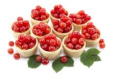 Закуска с ягодами 3 Стоковое Фото