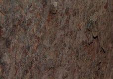 Залайте текстура текстуры деревянная для космоса предпосылки для текста Стоковые Изображения RF