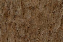 Залайте текстура текстуры деревянная для космоса предпосылки для текста Стоковые Фотографии RF
