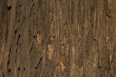 Залайте текстура текстуры деревянная для космоса предпосылки для текста Стоковое фото RF