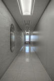 зала компании Стоковая Фотография RF