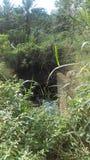 Залежная земля стоковое фото