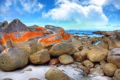 залив горит Тасманию Стоковая Фотография
