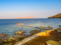 Залив Египет акул Стоковые Изображения