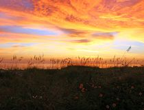 залив Мексика над заходом солнца стоковые фотографии rf