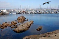 залив Монтерей Стоковые Изображения RF