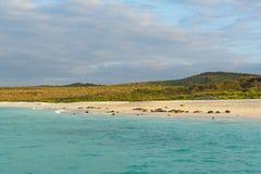 Залив на заходе солнца, острова Gardner Галапагос, эквадор стоковое фото
