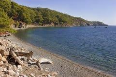Залив на Phaselis, Турция Стоковое Изображение