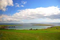 залив одичалый Стоковая Фотография RF