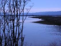 залив francisco san Стоковые Изображения