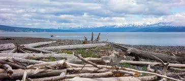 Залив Kachemak в весеннем времени Стоковые Фотографии RF
