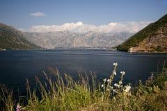 Залив Kotor Черногория, Европа Красивый среднеземноморской ландшафт стоковое изображение rf