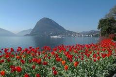 Залив Lugano стоковое изображение