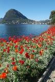 Залив Lugano стоковые изображения
