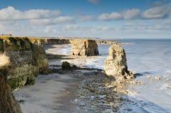 Залив Marsden Стоковое Изображение RF