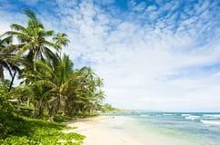 залив martin s Барбадосских островов Стоковые Изображения