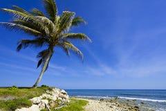 залив montego Стоковое Изображение RF