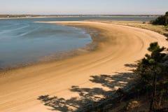 Залив Welfleet, треска накидки Стоковое Изображение RF