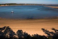 Залив Welfleet, треска накидки Стоковая Фотография RF