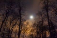 Залитое лунным светом небо вечера Стоковая Фотография