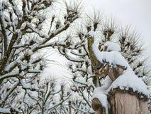 ЗАЛЬЦБУРГ, АВСТРИЯ - 13-ОЕ ФЕВРАЛЯ 2018: Римская статуя на Mirabellplatz в снеге сезона зимы Стоковое Изображение RF