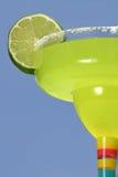 заманчивость голубого зеленого цвета Стоковые Фото